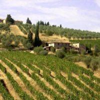 Monteroni d'Arbia (SI)