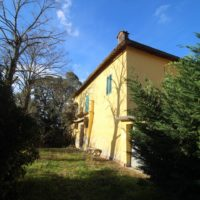 Monsindoli Siena