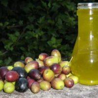 Olio extravergine d'oliva genuino del Cilento